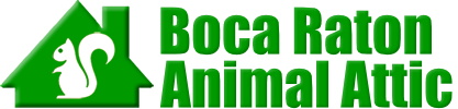 Boca Raton Animal Attic